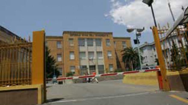 ospedale cosenza, Cosenza, Archivio