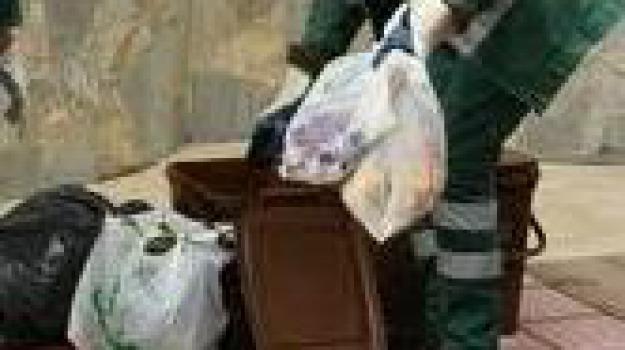 comune cosenza, mario occhiuto, porta a porta, rifiuti, Cosenza, Archivio