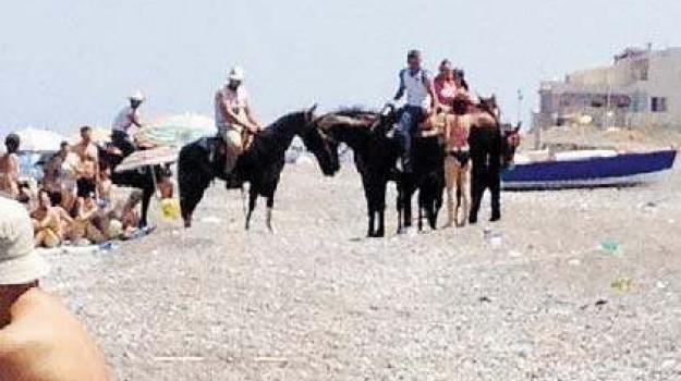 barcellona, cavalli, collica, Messina, Archivio