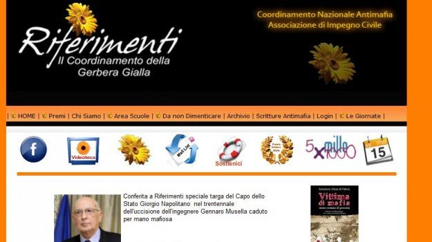 gerbera gialla, musella, riferimenti, Reggio, Calabria, Archivio