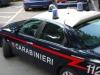 Cardellini di specie protetta, una denuncia a Reggio