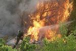 Appicca incendio anziano arrestato dalla Forestale