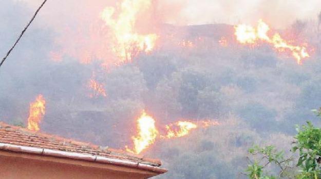 incendi nel palermitano, Sicilia, Archivio