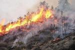 Paese assediato dalle fiamme Sindaco infuriato