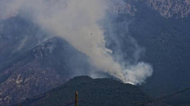 calabria, incendi, pollino, sud, Calabria, Archivio