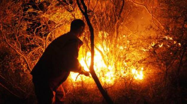 incendi, Calabria, Archivio