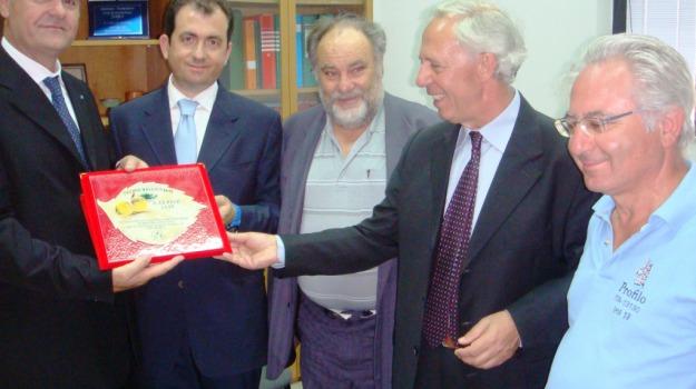 ambasciatore albanese, gallico, Reggio, Archivio