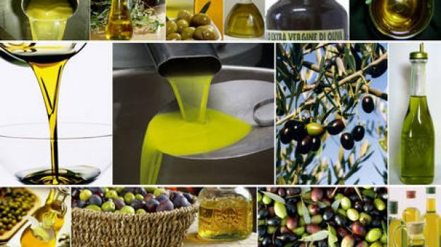 azienda fattoria s. sebastiano, aziende olearie, calabria, premio, Calabria, Archivio