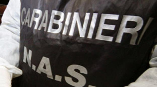 assenteismo asp catania, carabinieri nas, Sicilia, Archivio