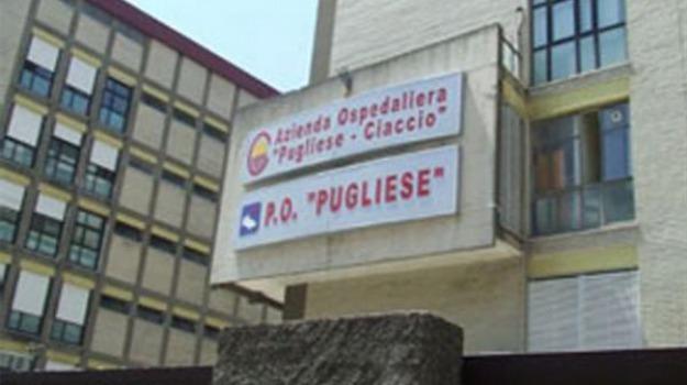 mater domini, ospedali catanzaro, perdite, pugliese ciaccio, Catanzaro, Calabria, Archivio