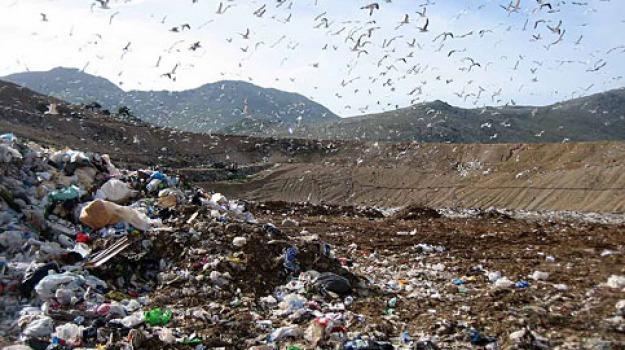 raccolta rifiuti, Messina, Archivio