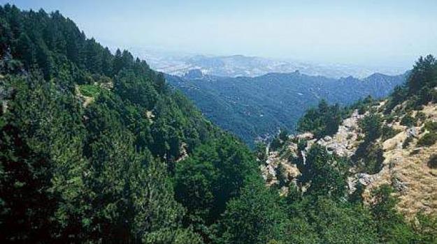 calabria, parchi naturalistici, Mario Oliverio, Viaggi