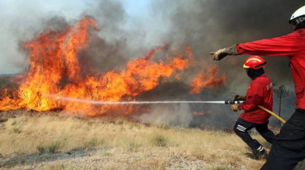 incendio, riserva zingaro, Sicilia, Archivio