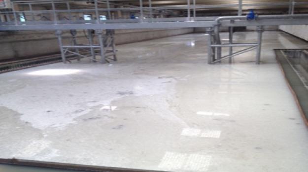 depurazione, reggio calabria, Reggio, Cronaca