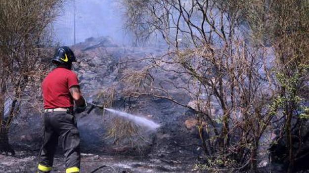 incendi in calabria, Catanzaro, Cosenza, Calabria, Archivio