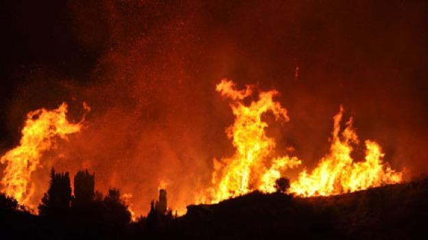 2012, calabria, incendi, Calabria, Archivio, Cronaca