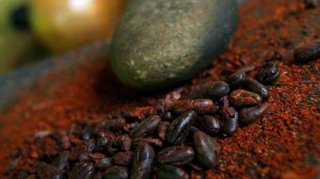 alzheimer, bevande cacao, memoria, Sicilia, Archivio, Cronaca