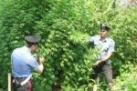 Operazione contro clan Nebrodi, 21 arresti