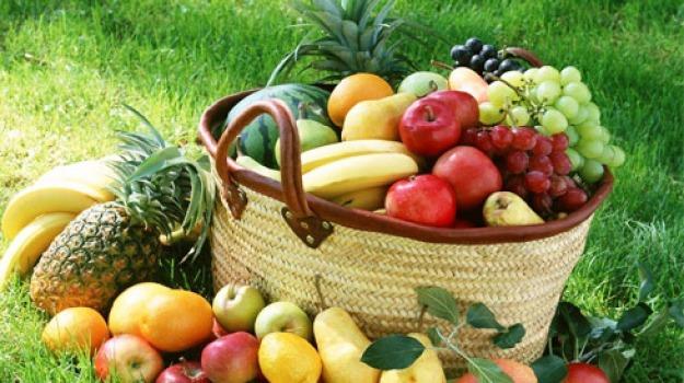 calorie, dieta, ipocalorica, longevità, nature, Sicilia, Archivio, Cronaca