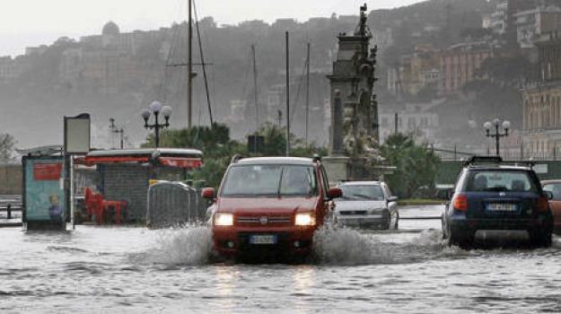 bacco, estate, pioggia, Sicilia, Archivio, Cronaca