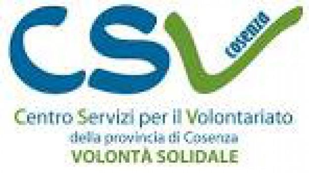 cosenza, sport, torneo, volontari, Cosenza, Archivio