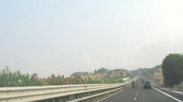 a29, autostrada, catania, palermo, Sicilia, Archivio