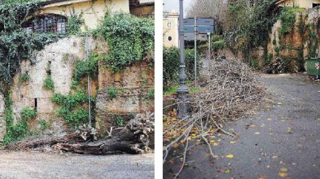 maltempo vibo, Catanzaro, Calabria, Archivio