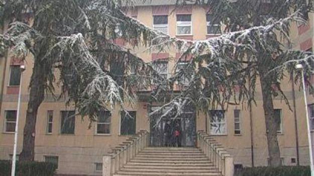 ospedale san giovanni in fiore, Cosenza, Calabria, Economia