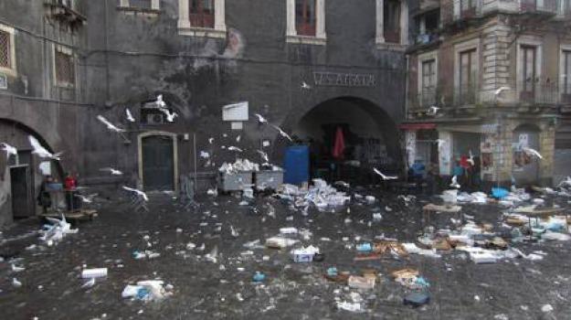 catania, mercati, Sicilia, Archivio