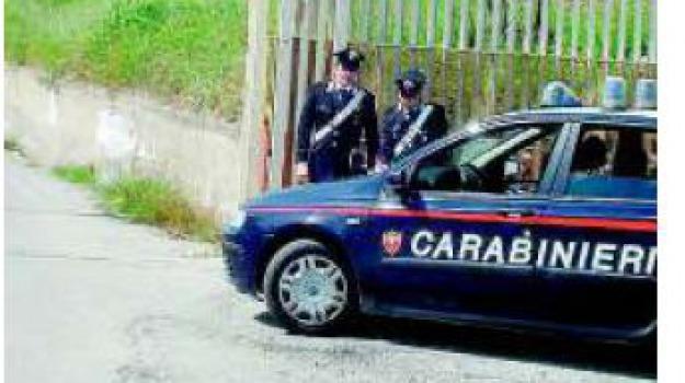 casignana, falcomata', Reggio, Calabria, Archivio
