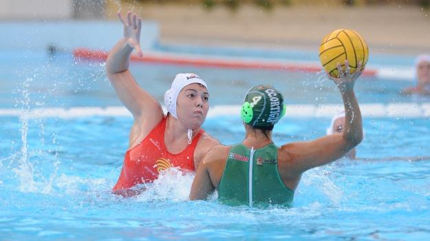 waterpolo despar messina, Messina, Sport