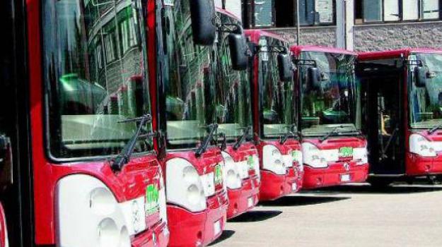 trasporto pubblico, Messina, Archivio
