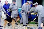 Le 'ndrine di Gioia padrone del narcotraffico: smistano cocaina anche nei porti nel Nord