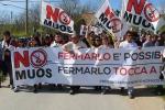 No Muos, annullato divieto di dimora a 15 attivisti