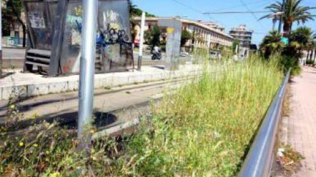 viale della libertà, Messina, Archivio