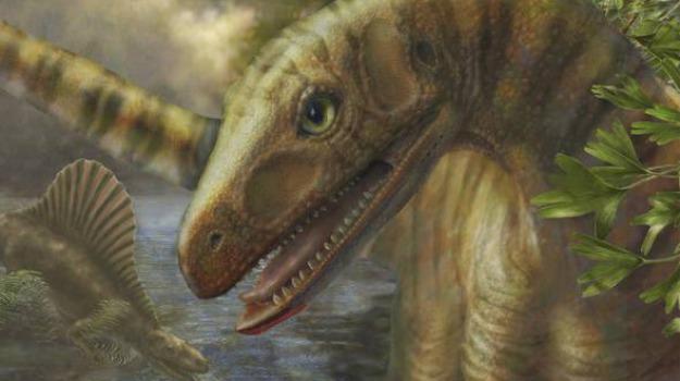 dinosauri, Sicilia, Archivio, Cultura