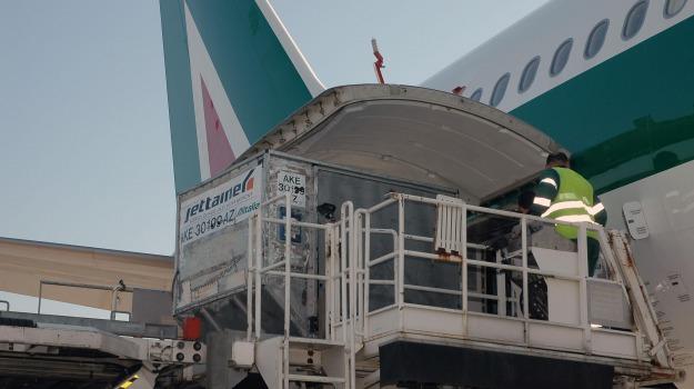 aeroporto, furto nei bagagli, Catanzaro, Calabria, Archivio