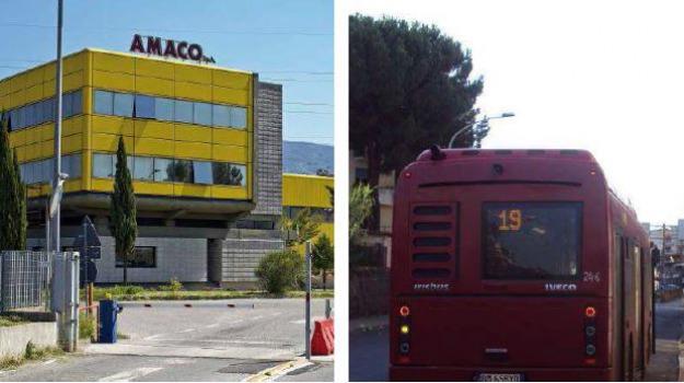 amaco, Cosenza, Calabria, Archivio