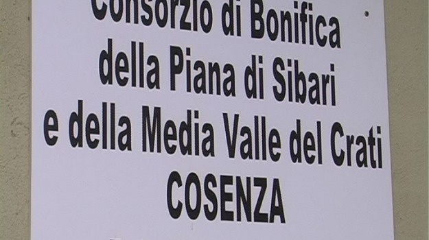 cosenza, lavoratori, sciopero, Cosenza, Calabria, Archivio