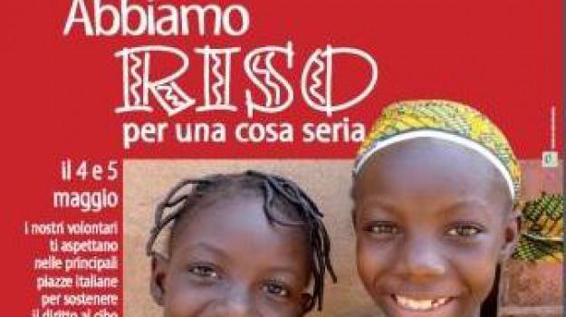 campagna riso, diocesi, focsiv, rossano, Sicilia, Archivio