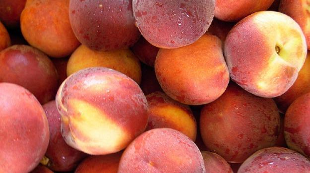 caldo, coldiretti calabria, frutta estiva, Calabria, Economia