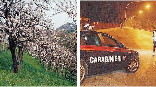 cassano, Calabria, Archivio
