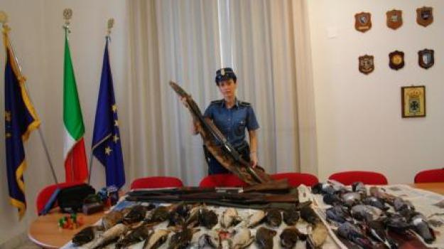 bracconaggio, denunce, polizia provinciale cosenza, Calabria, Archivio