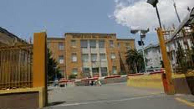 cosenza, ospedale annunziata, rene, trapianti, Cosenza, Calabria, Archivio