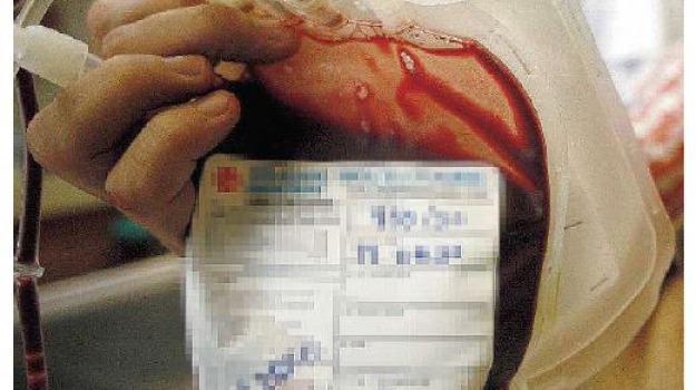 sangue infetto, Cosenza, Calabria, Archivio