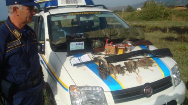 cassano allo jonio, denuncia, fucili, polizia provinciale, richiami fauna, Calabria, Archivio