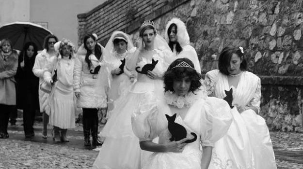 altomonte, erminia fioti, femminicidio, giampietro coppola, Calabria, Archivio
