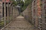 Olocausto, il mondo ricorda le vittime