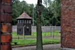 Napolitano: vigilare sull'antisemitismo