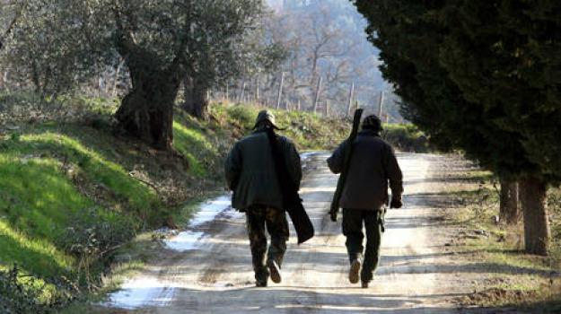 cacciatori, cittanova, fucili, rapinati, reggio calabria, Reggio, Calabria, Archivio